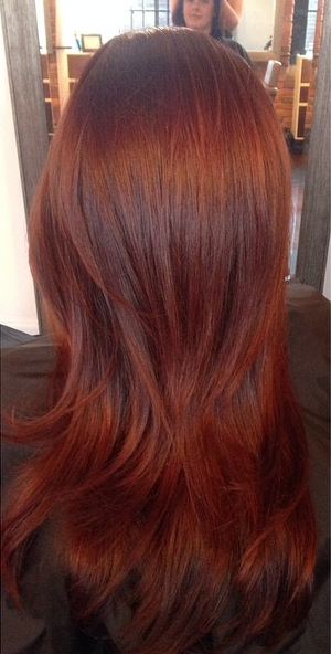 xAuburn-Hair-Color-Trend-Fall-2014.png.pagespeed.ic.KsQRGLQAUw